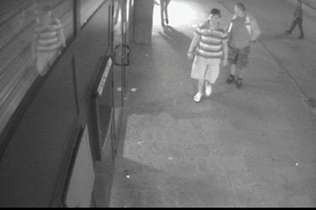 lopovi na delu