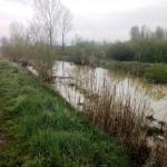 Grad preduzeo preventivne i operativne mere obrane od poplava