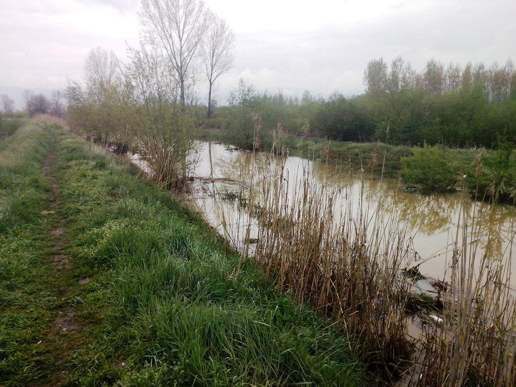 Kanal - Novo Tigrovo naselje