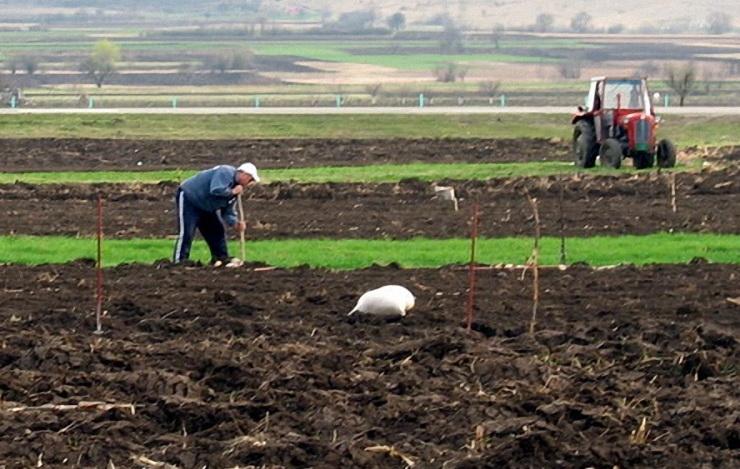 Photo of Okupljanje poljoprivrednica Centralne Evrope u Pirotu