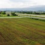 U 2017.godini u poljoprivredu u Pirotu uloženo skoro milion i po evra