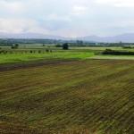 Objavljen javni poziv za davanje u zakup poljoprivrednog zemljišta u državnoj svojini
