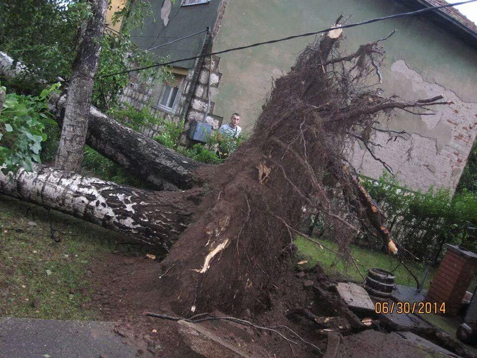 Photo of Saniraju se posledice oluje