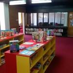 U Narodnoj biblioteci Pirot 50% popusta na godišnju članarinu
