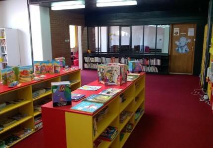 biblioteka (3)