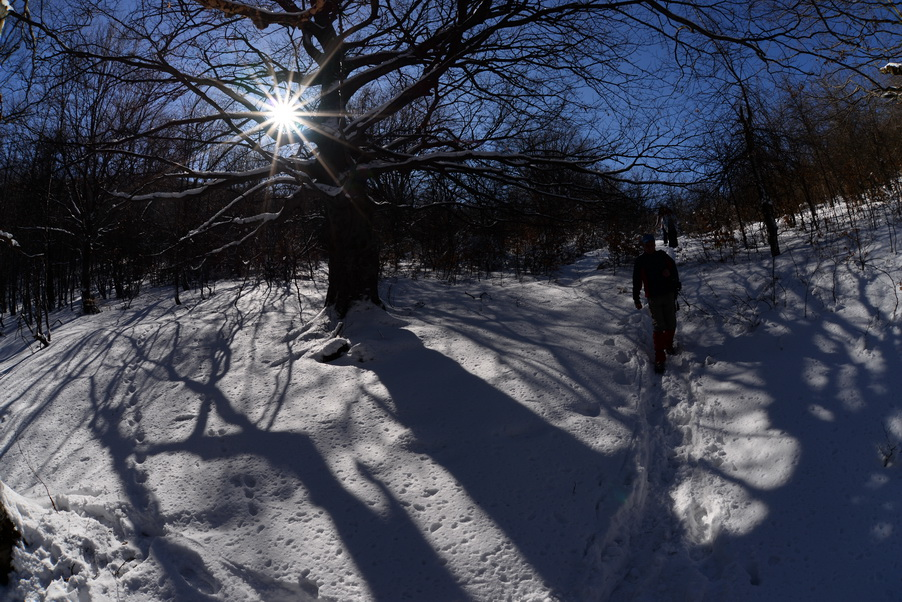 Photo of Gorska služba spasavanja probila put do zavejanog stočara kroz smetove  Suve planine