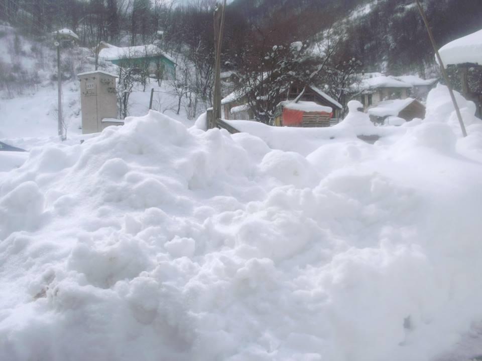 Photo of Sneg u babušničkom kraju izazvao mnogo problema. Angažovani svi raspoloživi kapaciteti u cilju normalizacije stanja