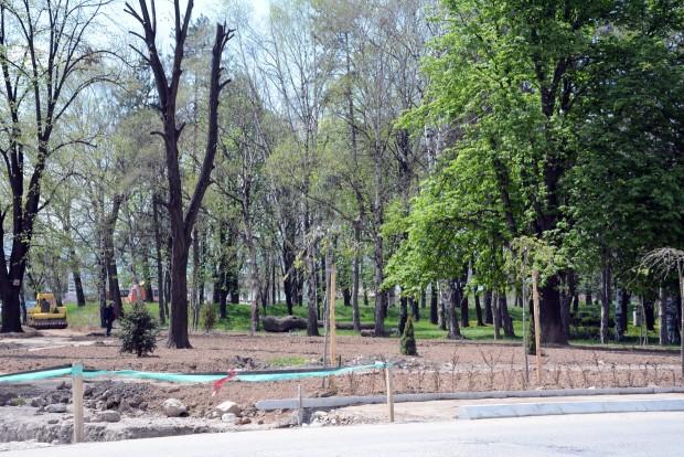 Photo of Foto vest: Uređenje zelenih površina na Kaleu