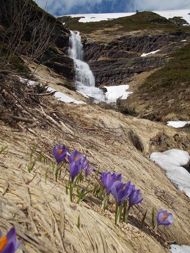 Koprenski vodopad, gornja kaskada