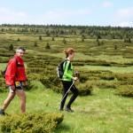 Ultra trail Stare planine po sedmi put okuplja planinske trkače sasvih kontinenata