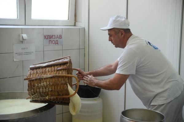 kackavlja peglana ministarka poljoprivrede_09