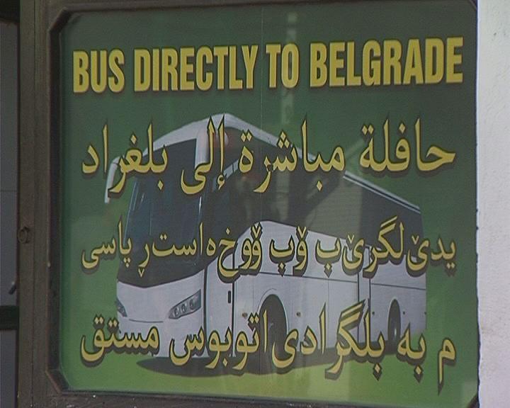 dimitrovgrad  obevstenja na arapskom