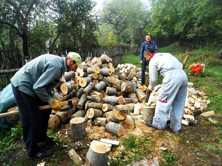 Photo of Babušnica:Pomažu nemoćnima u pripremi ogreva za zimu