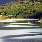 Na Zavojskom jezeru borave turisti iz cele Srbije
