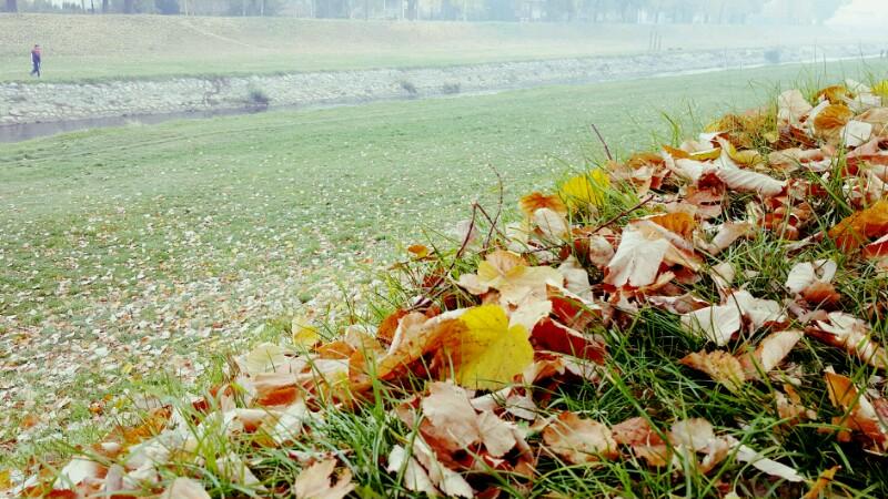 Photo of Još jedan prolećni dan u novembru