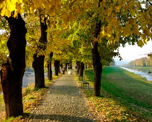 jesen u pirotu-autor aleksandar ciric_07