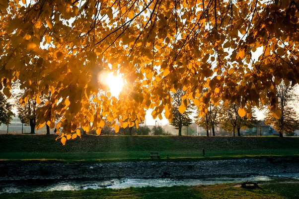 jesen u pirotu-autor aleksandar ciric_09