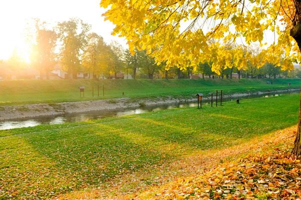 jesen u pirotu-autor aleksandar ciric_10