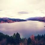 Poribljavanje Zavojskog jezera