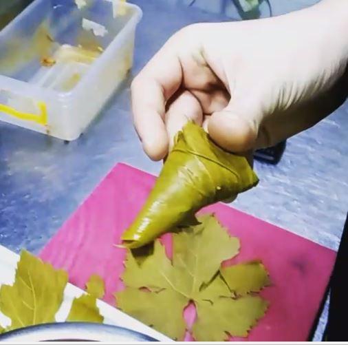Photo of Kako se mota sarmica od vinovog lista za 4 sekunde?