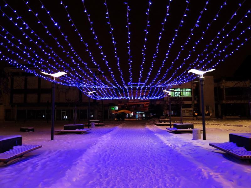 pirot sneg _4