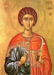 Photo of Danas je Sveti Trifun