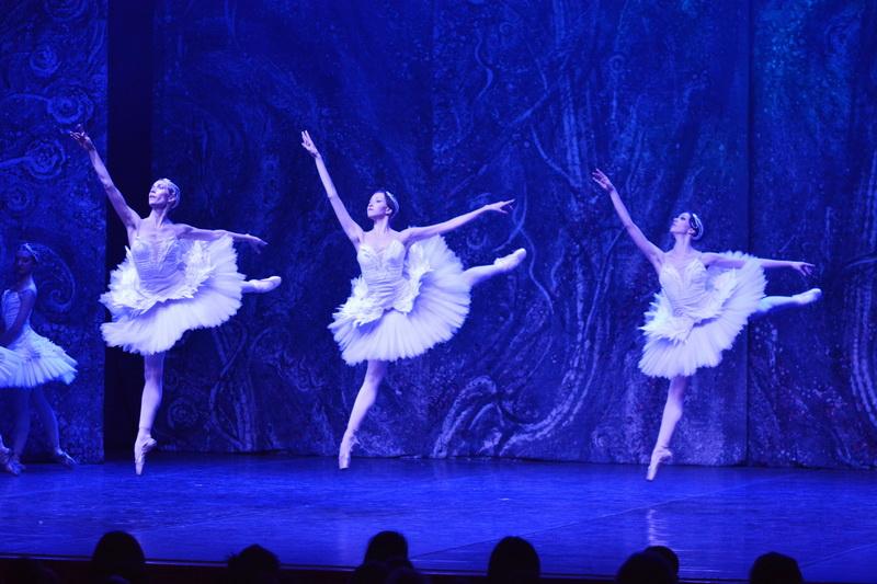 balet labudovo jezero u pirotuž_1