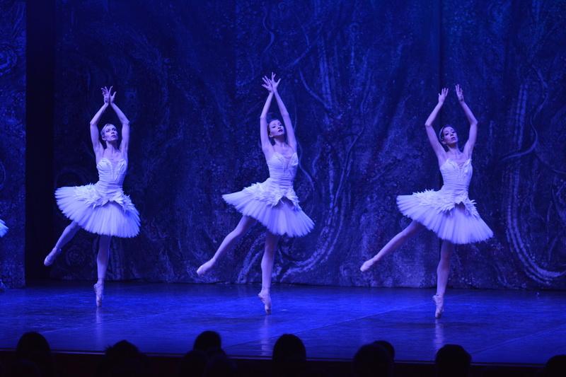 balet labudovo jezero u pirotuž_3
