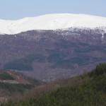 Spasioci Gorske službe spasavanja pomogli povređenom planinaru