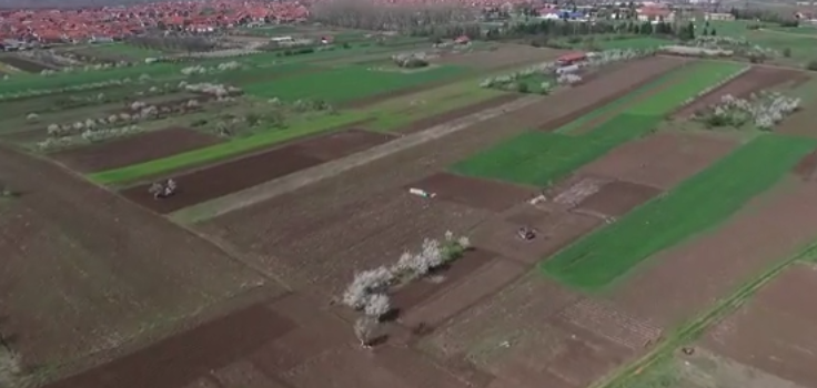 Photo of Pirotski poljoprivrednici obilaze farme u Holandiji, Nemačkoj, Češkoj