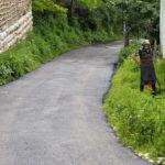Revitalizovan put do sela Oreovica