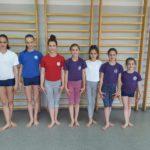 Gimnastičari na Državnom prvenstvu u Novom Sadu