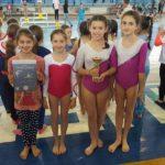 Tri pehara i zlato za gimnastičare