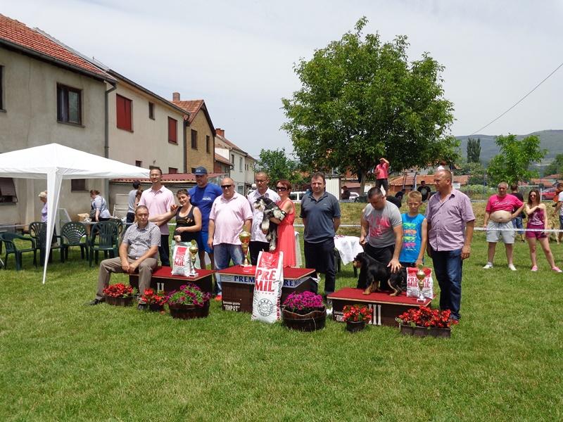 Photo of Izložba pasa svih rasa u Pirotu