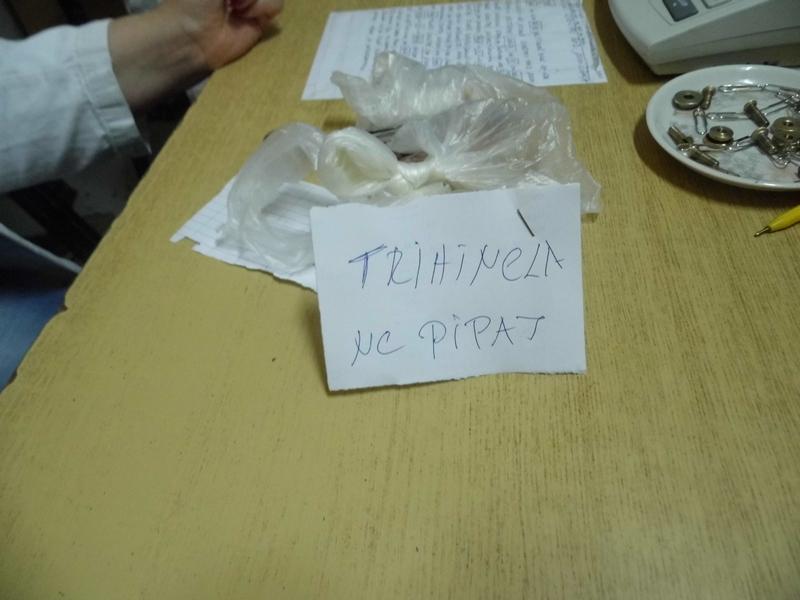 Photo of Veterinarska klinika; pojavila se trihineloza!