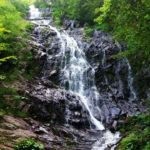 Grad Pirot briše iz novog prostornog plana sve lokacije za MHE na teritoriji Parka prirode Stara planina