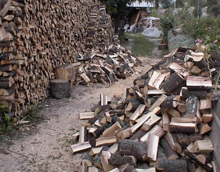 drva za zimu