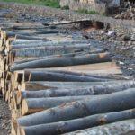 Pirotske drvoseče: Cena ogreva kao u sred leta!