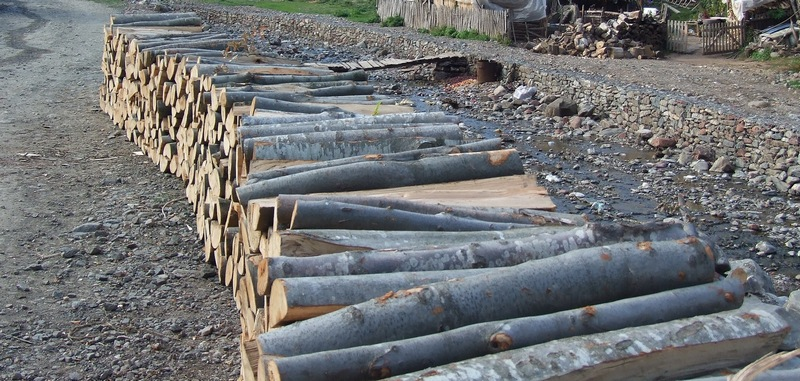 Photo of Pirotske drvoseče: Cena ogreva kao u sred leta!