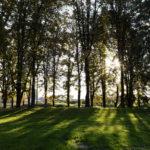 Park na Kaleu – biser Pirota