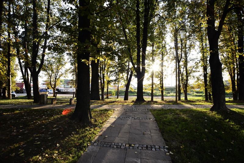 park-kale_08