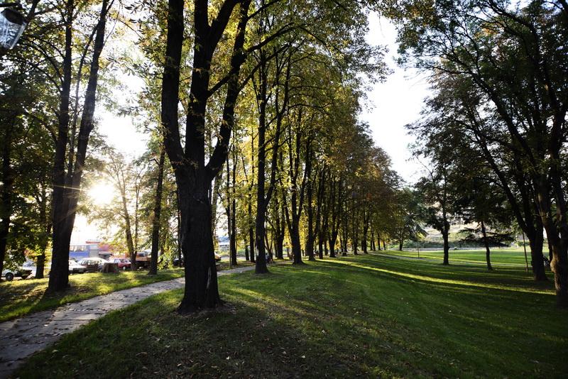 park-kale_11