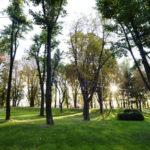 """Sve zelene površine u gradu """"pod konac"""""""