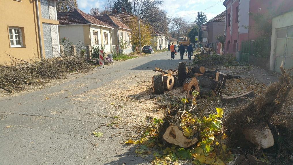 Photo of Uređuju se trotoari u ulici Save Kovačevića