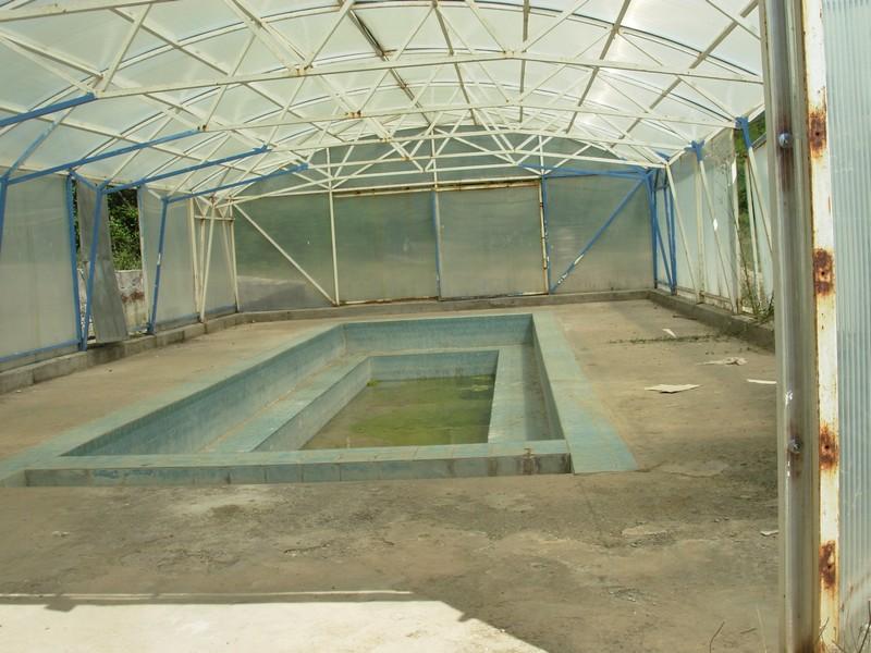 dag-banjica-bazen2