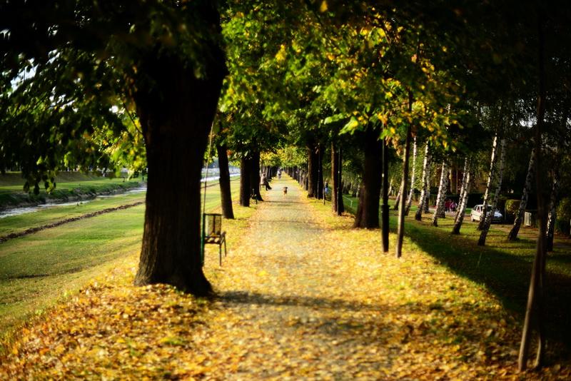 jesen-kej_5_resize