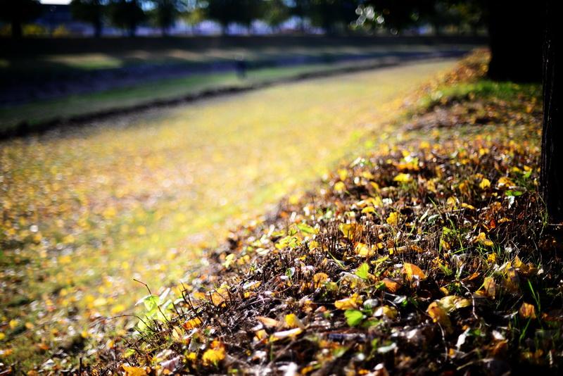 jesen-kej_6_resize