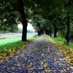 Danas počela jesen, u oktobru nas očekuje miholjsko leto