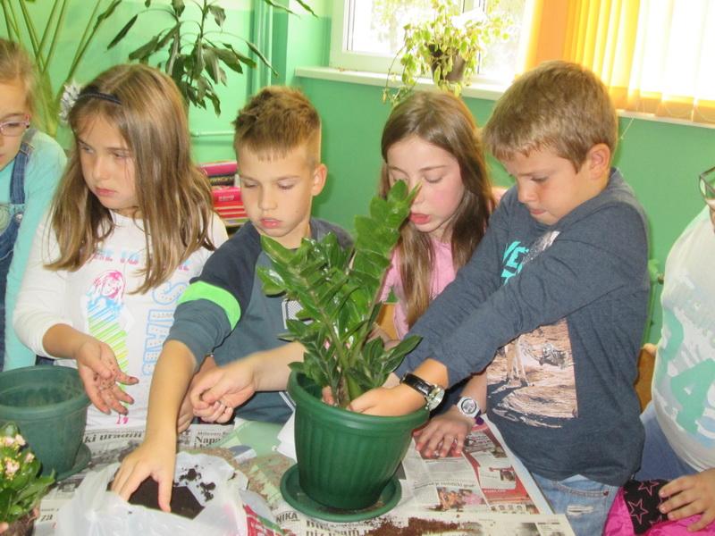 """Photo of Zelena učionica u OŠ """"8. septembar"""""""