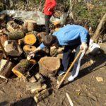 Starima i nemoćnima pomažu u pripremi ogreva za zimu